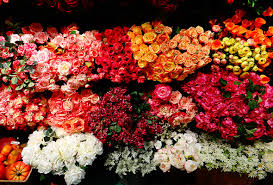 flowers nyc floral traders work to remain in the district the midtown