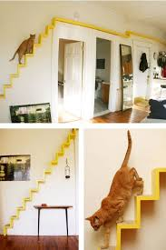 Shelves For Cats by Home Is Where Your Pets Are Down2earth Interior Design