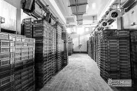 chambre froide industrielle prix chambre froide industrielle containers maritimes vente location