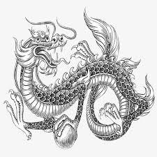 imagen blanco y negro en illustrator blanco y negro dragon illustrator blanco y negro dragon
