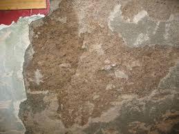 Best Basement Wall Sealer by Basement Wall Mortar Building U0026 Construction Diy Chatroom Home