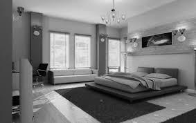 bedroom home gym design ideas renovations u0026 photos with vinyl