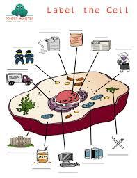 label the cell parts worksheet ponder monster