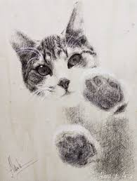 imagenes a lapiz de gatos los 10 mejores dibujos de gatos a lápiz
