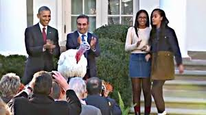 one photo 11 25 15 president obama pardons the thanksgiving