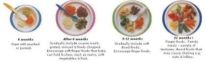 introducing solids guide ngala