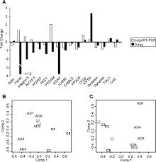 autopsy report template single channel quantitative multiplex reverse transcriptase hi res