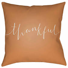 thanksgiving decorative pillows decor for the home jcpenney
