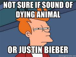 Fry Meme - futurama fry meme justin bieber by kagomaruxx on deviantart