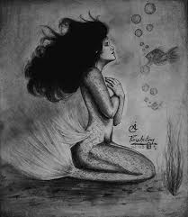 pencil sketch mermaid drawing by purushotama anil kumar