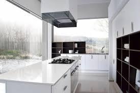 Kitchen Cabinets Houston Tx - foscari interiors contemporary style u0026 european cabinets houston tx
