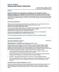 Resume Samples For Professionals by 18 Best Non Profit Resume Samples Images On Pinterest Free