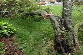 damage repair dutchess county ny cleanup lehigh