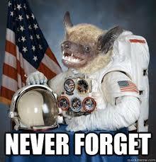 Bat Meme - unimpressed space bat memes quickmeme
