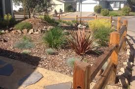 eco friendly garden tour rohnert park lawn conversion sonoma