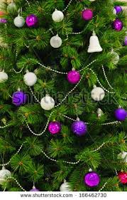 purple tree stock images royalty free images vectors