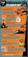 121 best halloween images on pinterest happy halloween animals