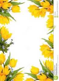 spring flower frame royalty free stock photos image 16956088