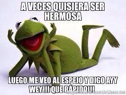 Memes Rana Rene - rana rene on humor memes and chistes