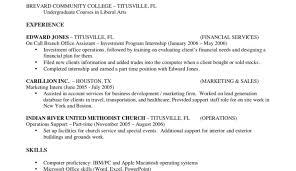 copy of resume eliolera com