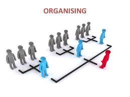 Organizing Business Organizing