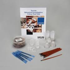termite behavioral investigation follow that trail classroom kit