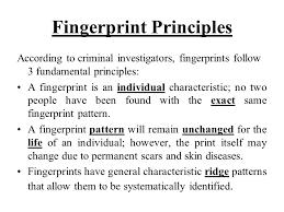 t trimpe fingerprint principles according to criminal