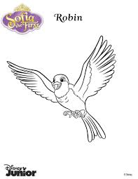 robin the pigeon coloring pages hellokids com