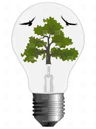 tree and birds inside light bulb vector clipart image 4283