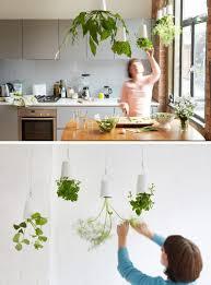superb hanging planter indoor 125 hanging planters indoor plants