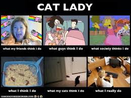 Funny Cat Lady Memes - what people think i do vs what i really do cat lady way of