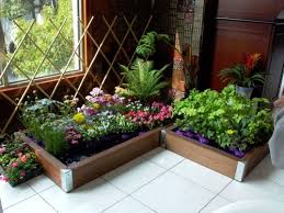 Best  Indoor Vegetable Gardening Ideas On Pinterest Gardening - Interior garden design ideas