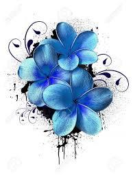 best 25 plumeria tattoo ideas on pinterest butterfly with