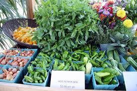farm to table concept staten island to embrace farm to table concept at blue waterfront