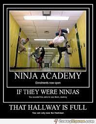 Meme Ninja - ninja academy is now open