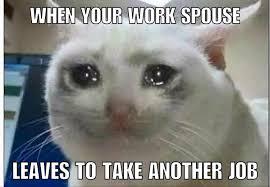Wife Husband Meme - lawyer memes everyone has a work wife husband facebook