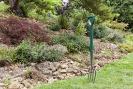 Types Of Community Gardens - different types of gardening forks information on garden fork