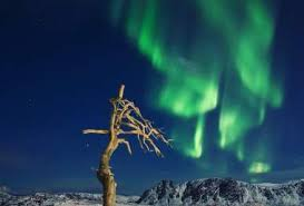 Best Time Of Year To See Northern Lights See The Northern Lights At The North Cape Norway