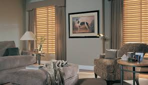 curtains amazing blinds living room interior design for home