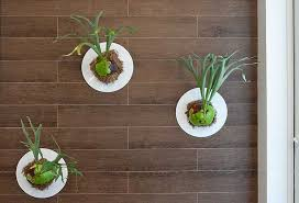 Indoor Gardening Ideas Garden Ideas By Florida Interior Designers