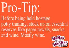 Potty Training Memes - pro tip potty training essentials hahas for hoohas