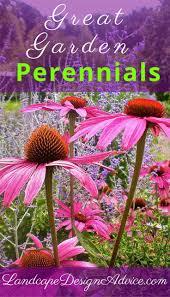233 best perennials images on pinterest flower gardening