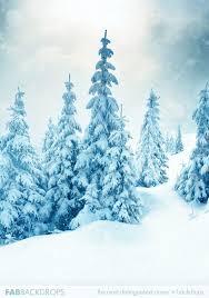 Christmas Photography Backdrops Fab Drops