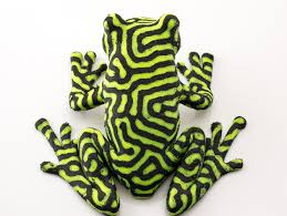 2 color tree frog by nervoussystem thingiverse