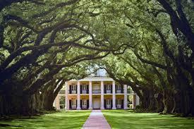 Antebellum Home Interiors Mille Fiori Favoriti Oak Alley And Evergreen Plantations