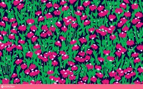 lilly pulitzer wallpaper 1280x800 57546