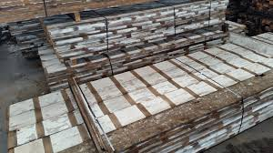 Pine Ceiling Boards by Antique Red Pine Reclaimed From Historic Tile Factory By Pioneer