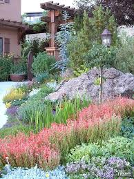Backyard Xeriscape Ideas Xeriscaping Ideas Defined Xeriscape Designs Front Yard Hermelin Me