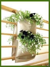 Ebay Vertical Garden - 116 best gardening regrowing balcony ideas images on pinterest