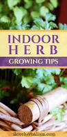 150 best gardening diy projects images on pinterest